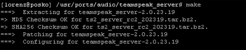 team speak make command result